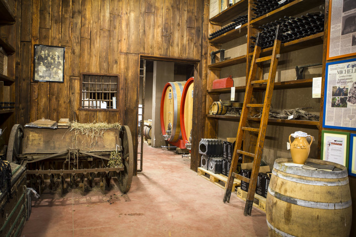 bottaia - wine cellar - vini alois - alois wines